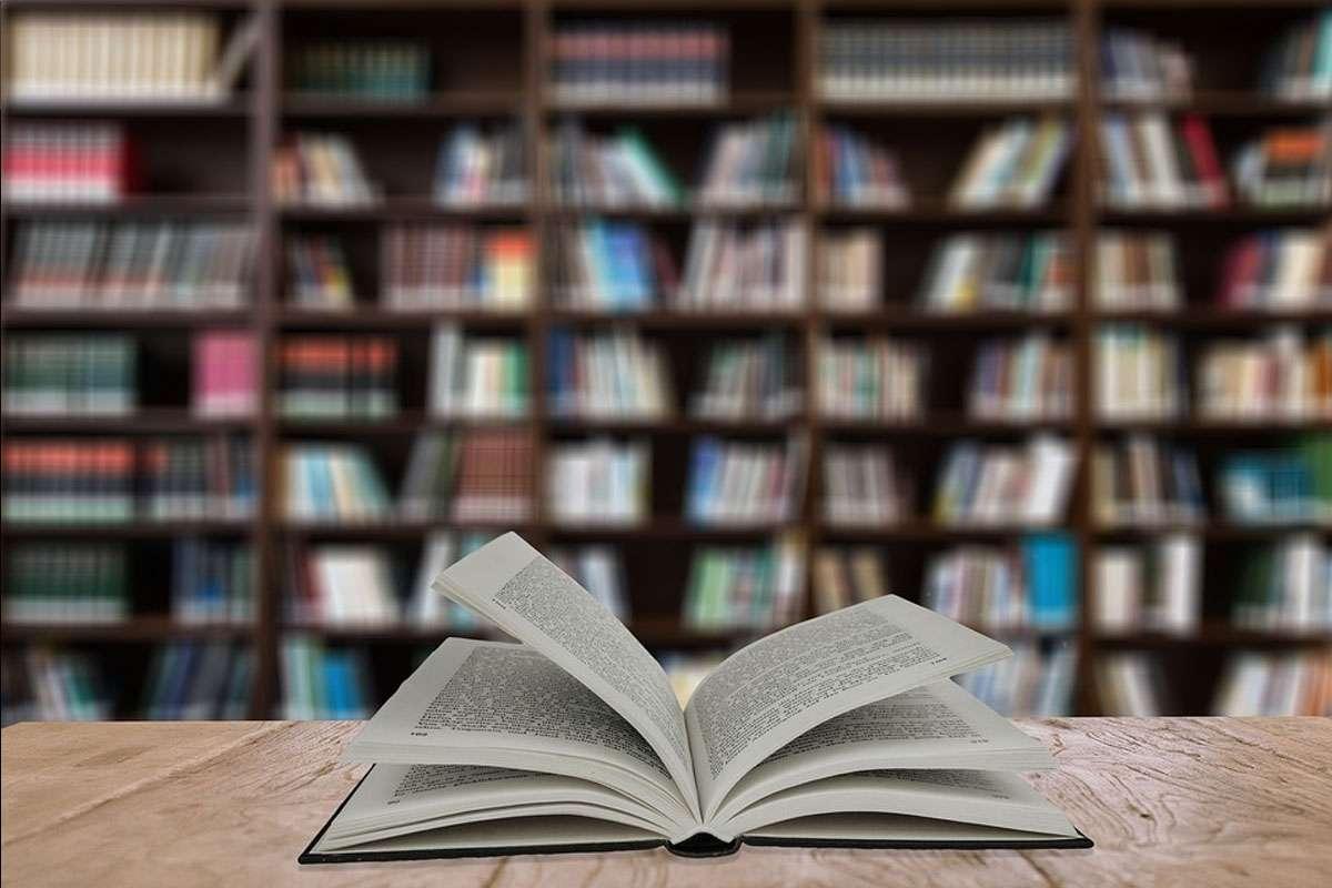 Bücherei-Buch